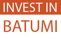 Invest in Batumi - Interactive Map